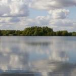 Logo + Fen Drayton Lake